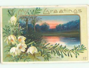 Divided-Back BEAUTIFUL FLOWERS SCENE Great Postcard AA2996