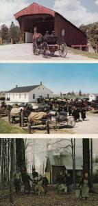 Mennonite Family Elmira Ontario 3x Postcard s