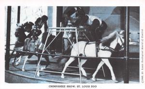 St Louis Missouri~Chimpanzee Show St Louis Zoo~1949 Postcard