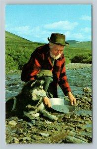 Nome AK-Alaska, Pioneer Herb Engstrom Panning for Gold at Basin Creek Postcard