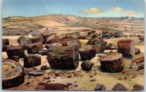 PETRIFIED FOREST National Park Postcard Petrified Logs Curteich Linen 1948