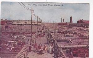 Illinois Chicago Union Stock Yards Cattle Pens Busy Alley