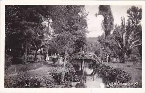 RP, Beautiful Scene, Xochimilco, Mexico, 1930-1950s