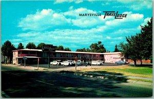 Marysville, California Postcard TRAVELODGE MOTEL Highway 99 Roadside 1950s Cars