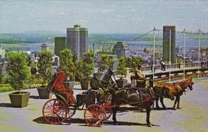 Canada Montreal Old French Horse Drawn Carriages On Mount Royal