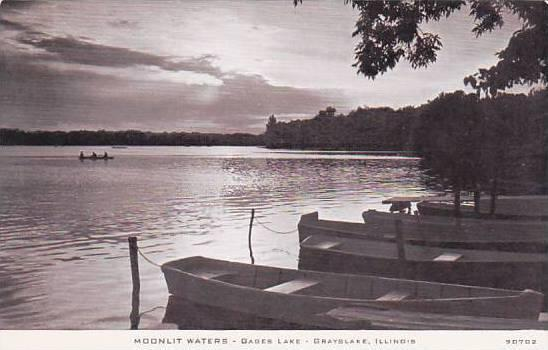 C R Childs Company Illinois Grays Lake Moonlit Waters Real Photo