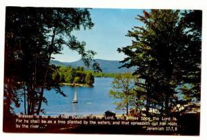 Lake Scene, Bible Quote, Jeremiah 17 7,8, Scriptcard