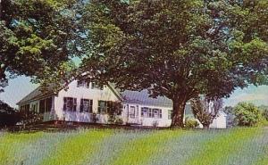 Maine Farmington Nordica Homestead