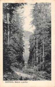 Poland Krynica Motyw z parku, Forest Trees