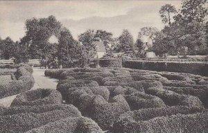 Virginia Mount Vernon Flower Garden Looking East Showing Boxwood Parterre Hom...