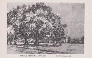South Carolina White Hall Myrtle Grove Plantation