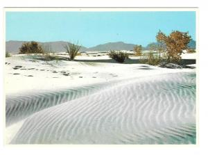 White Sands National Monument NM Ripples Petley Postcard