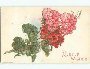 Pre-Linen BEAUTIFUL LITTLE PINK FLOWERS FOR BEST WISHES k4834