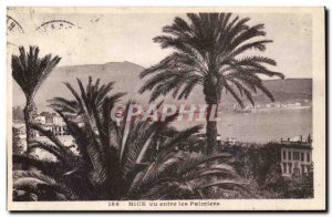Nice Old Postcard view between the palm trees