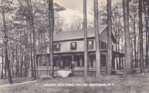 New York Mcgregor Grant Cottage Mountain Artvue