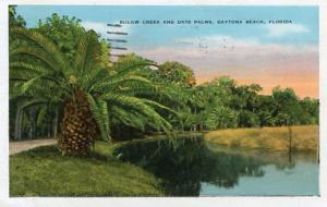 FL - Daytona Beach, Bulow Creek & Date Palms