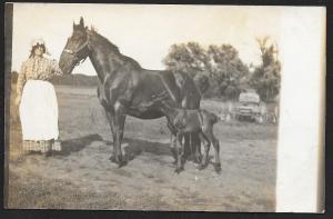 Farm Woman, Mother Horse & Foal RPPC Unused c1910s