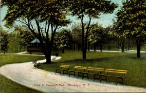 New York City View In Prospect Park 1909