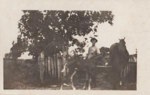Arrogant Farmer Mitchell The Foal Antique Real Photo Postcard