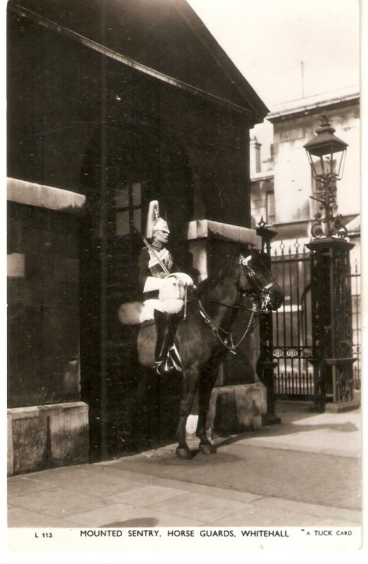 Mounted Sentry, Horse Guards, Whitehall..Horses Tuck Real Photograph Postcard