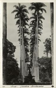 brazil, RIO DE JANEIRO, Jardim Botanico (1940s) RPPC (I)