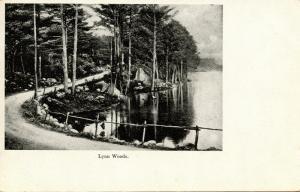 MA - Lynn. Lynn Woods