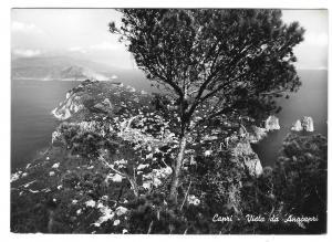 Italy Capri Island Vista Anacapri Birdseye View VERA Glossy Photo Postcard 4X6