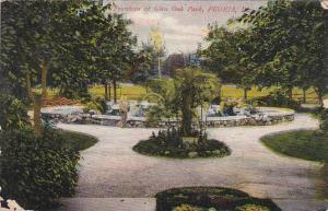 Illinois Peoria Fountain At Glen Oak Park 1908