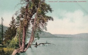 1910s Postcard - Shore Line McKinney's Lake Tahoe California Edward Mitchell Pub