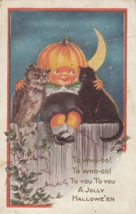 HALLOWEEN , 1917 ; Pumpkin Head Boy hugging an Owl & a black Cat
