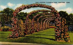 Connecticut Hartford Elizabeth Park Rose Gardens
