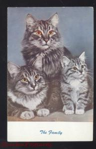 NO. C4 STANDARD ARTS BERKELEY CALIF. CUTE CAT CATS FAMILY