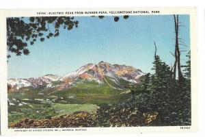 Wyoming Yellowstone Park Electric Peak From Bunsen Peak Vtg Haynes Postcard