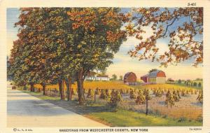 USA New York Greetings from Westchester County 1941