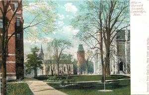 Cambridge Massachusetts~Paths of Steeple & Towers~Harvard Grounds~1910 Postcard