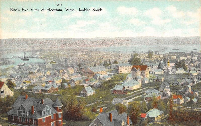 Hoquiam Washington~Birdseye Residential~Homes~Backyards~Downtown~Bridge~1908 PC