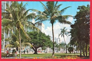 BISCAYNE BLVD. HEART OF MIAMI, FLORIDA  SEE SCAN