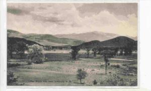 The White Mountains From Intervale, New Hampshire, 1900-1910s