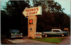 Westport, Massachusetts Postcard YOUNG'S TOURIST COURT motel Roadside 1950s Cars