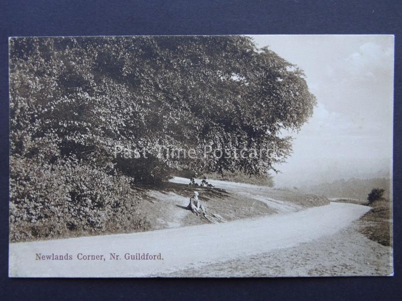 Surrey GUILDFORD Newlands Corner - Old Postcard by Boots Pelham Series