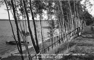 McMillan Michigan~Big Manistique Lake Shoreline from Camp Timberline~1952 RPPC