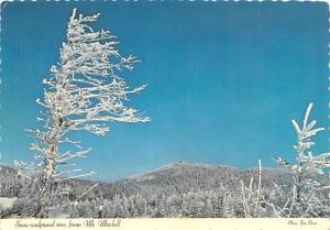 Mount Mitchell - Charlotte, North Carolina