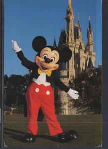 Mickey Mouse Walt Disney World BIN