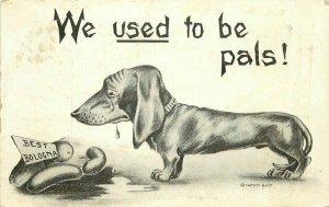 Bologna Comic Humor Dachshund Dog Sausage pal 1910 Postcard 20-1140