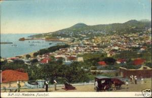 portugal, MADEIRA, Funchal, Panorama (1910s)