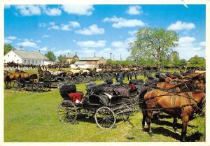Canada Kitchener Waterloo, Ontario Mennonite Meeting House Horses