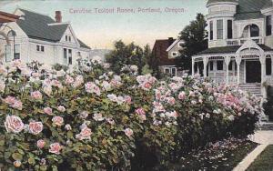 Caroline Testout Roses, Portland, Oregon, PU-1910