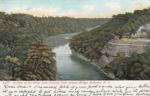 Genesee River Gorge View from Driving Park Avenue Bridge Rochester NY pm 1907