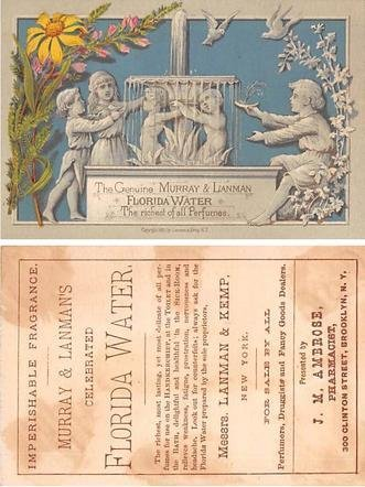 Victorian Trade Card Approx size inches = 3 x 4.5 Pre 1900 stains on back fro...