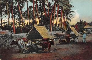 12042 Philippine Islands 1912   Ox Carts at Pampanga
